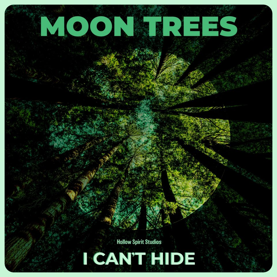 I Can't Hide Album Art